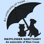 Mayflower Sanctuary, rescuing cats and dogs.